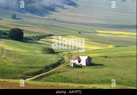 ruined house on the Piano Grande near Castelluccio ,in the Sibillini National Park,Le Marche,Italy - Stock Image