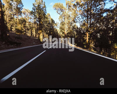 Long way road at the mountain with pines forest in front and blue clear sky - ground point of view with black asphalt and white lines - driving and tr - Stock Image