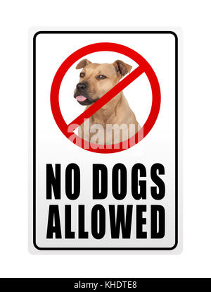 prohibitory sign with text no dogs allowed, isolated on white background - Stock Image