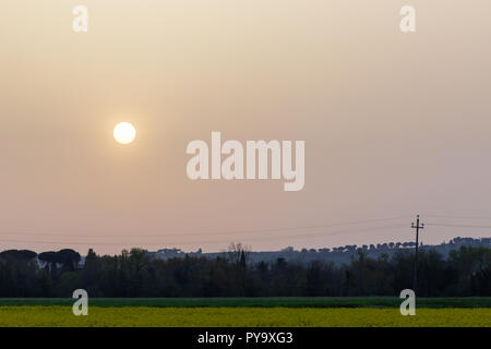 Sunset with sand suspended in the atmosphere, coluring the sky red, over some cultivated fields with yellow flowers - Stock Image