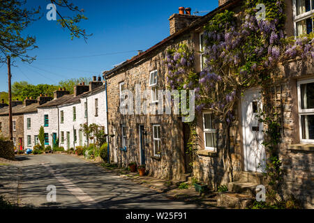 UK, Cumbria, Sedbergh, Millthrop, wisteria plant growing outside stone built cottage on road through hamlet - Stock Image