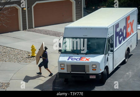 Federal Express delivery truck and driver carrying package to residential home, Castle Rock Colorado US. Photo taken in March. - Stock Image