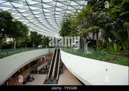 18.04.2019, Singapore, , Singapore - View into the new Jewel Terminal at Changi International Airport. The design comes from the architecture firm Mos - Stock Image