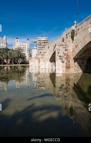 Small lake under Puente Del Mar bridge in the Turia Gardens (Jardines del Turia), a 9km former riverbed running through the city, Valencia, Spain - Stock Image
