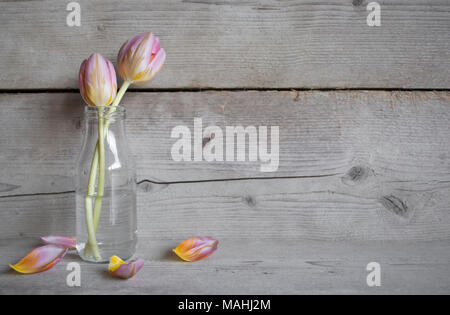 Pink tulips in glass bottle, on old wooden background with petals - Stock Image