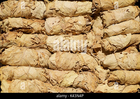 Tobacco leaves for sale at the bazaar, Shiraz, Iran - Stock Image