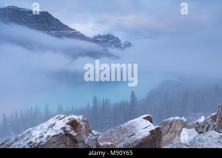 Early morning mist shrouds Peyto Lake in the Canadian Rockies, Banff National Park, Alberta, Canada. Autumn (September) 2017. - Stock Image