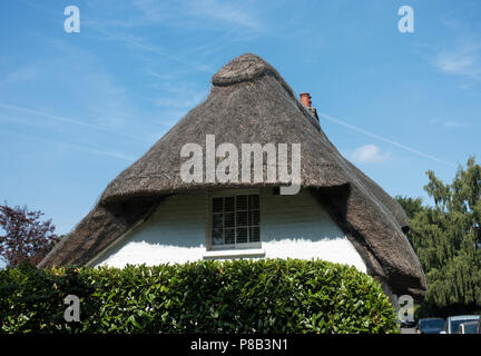 Thatched cottage - Stock Image