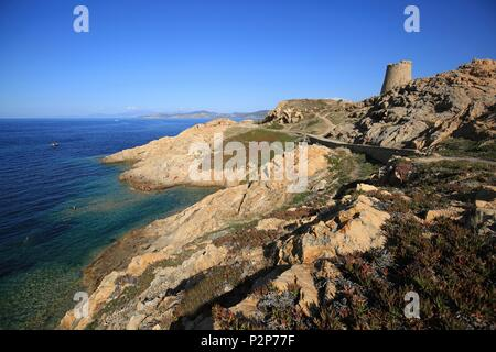 France, Haute Corse, Balagne, Ile Rousse, Swimming in one of the coves of the island of Pietra - Stock Image