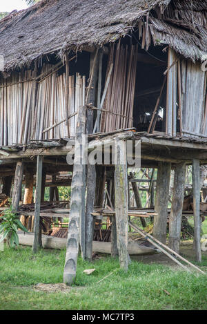 Swagup village of Insect People with wooden stilt houses, Upper Sepik, Papua New Guinea - Stock Image