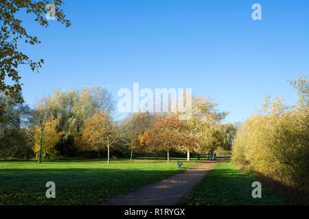 Stroll in Milton park in autumn Cambridge UK 10/11/2018 - Stock Image