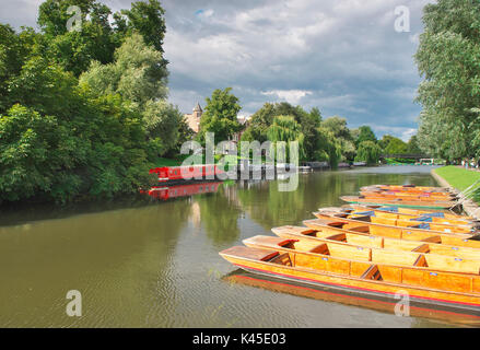 Peaceful scene on the River Cam in Cambridge during a quiet summer morning on the river - Stock Image