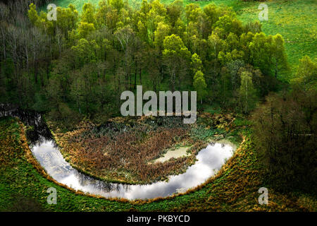 Happy nature with a smiling lake near a green forest seen from above - Stock Image