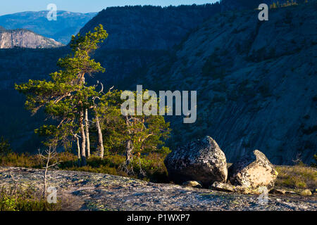 Early morning light at Måfjell in Nissedal, Telemark, Norway. - Stock Image