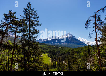 Panoramic picture of Mount Faloria on a sunny day, under a blue sky with no clouds. Cortina d'Ampezzo, Dolomites, Italy. - Stock Image