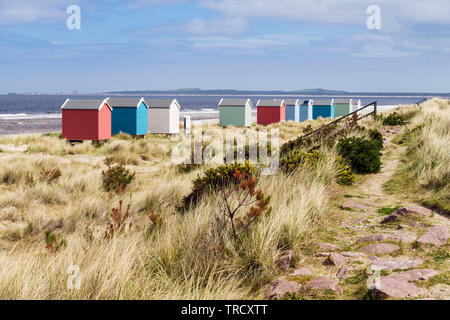 Path through sand dunes above Findhorn beach with colourful beach huts on Moray Firth coast. Findhorn, Moray, Scotland, UK, Britain - Stock Image