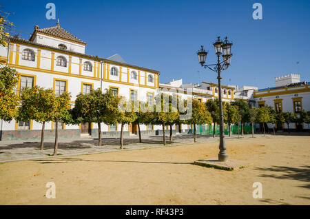 Seville, Spain, Plaza del Patio de Banderas, Andalusia, Southern Spain. Europe - Stock Image