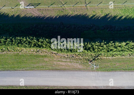 Hedge moved 4 metres sideways across faultline by earthquake, 4th September 2010, near Darfield, Canterbury, South Island, New Zealand - drone aerial - Stock Image