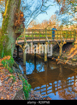 Pooh Sticks Bridge Ashdown Forest. - Stock Image