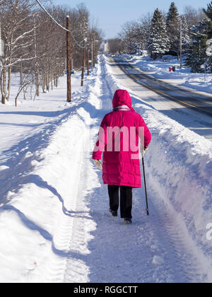 Senior Woman Winter Walk: A woman in a pink coat walking with a cane on a recently plowed snowy path. - Stock Image
