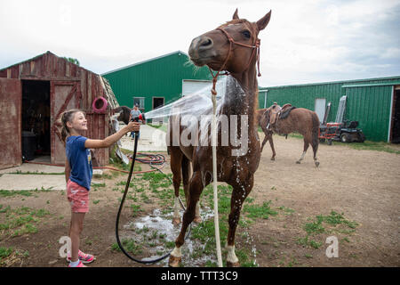 Side view of smiling girl spraying water on horse at barn against cloudy sky - Stock Image