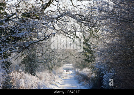 Country lane with snow, nr Chipping Sodbury, South Gloucestershire - Stock Image