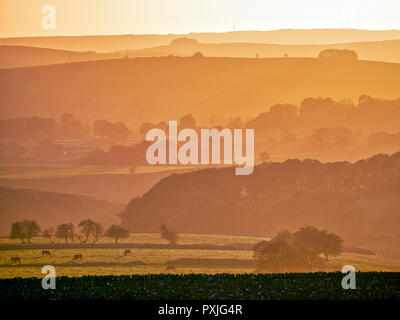 UK Weather: spectacular sunset along the A515 road between Buxton & Ashbourne in the Peak District National Park, Derbyshire Credit: Doug Blane/Alamy Live News - Stock Image