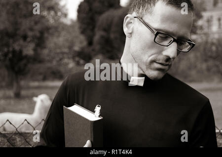 Good looking priest wearing spectacles and holding bible with alpaca in field behind him - Stock Image