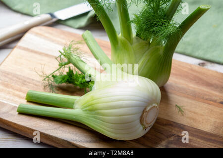 Healthy vegetable diet, raw fresh florence fennel bulbs close up - Stock Image