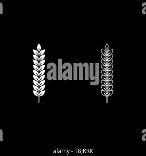 Spikelet of wheat Plant branch icon outline set white color vector illustration flat style simple image - Stock Image