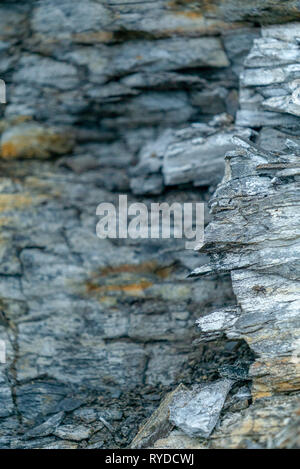 Maple Ledge Dolomite Beds Detail at Kimmeridge Bay in Dorset UK - Stock Image