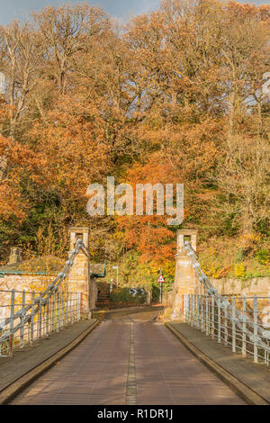 Whorlton suspension bridge over the river Tees, Teesdale, County Durham, UK in autumn sunshine with copy space - Stock Image