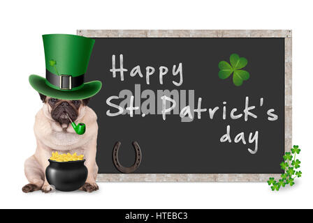 cute pug puppy dog with leprechaun hat for st. patrick's day smoking pipe, sitting next to blank blackboard - Stock Image