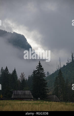 Two wooden huts at the foot of a forest-covered slope at the mountainside - Stock Image