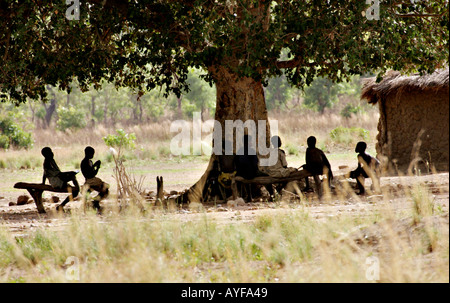 School s out children shelter from the sun under a village tree Wechiau Northwestern Ghana - Stock Image