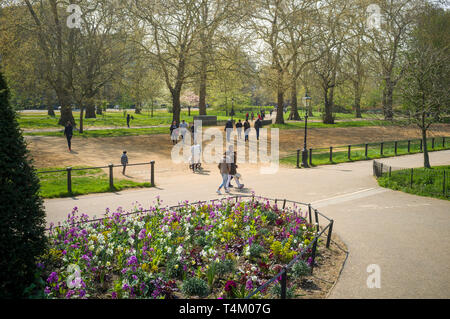 A colourful flower bed in Hyde Park. London in Spring - Stock Image