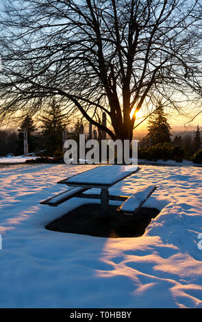 Burnaby Mountain Park in Winter.  Burnaby, British Columbia, Canada. - Stock Image