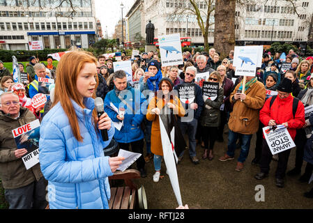 London, UK. 26th January 2019. London protest against the intended resumption of whaling by Japan.The Japanese government recently backed out of an international agreement banning commercial whaling. Campaigners rally at Cavendish Square for the march to the Japanese Embassy. Pictured addressing the assembled crowd Bella Lack. Credit: Stephen Bell/Alamy Live News. - Stock Image