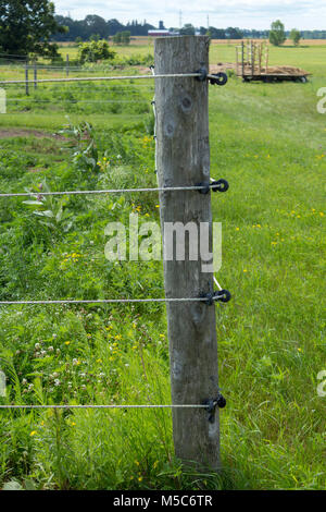 Close up of fench post with electric wires for keeping livestock in or out of fields - Stock Image
