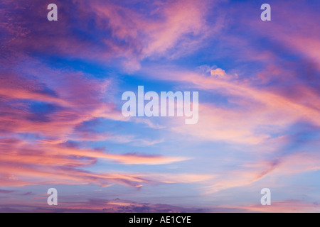 Sunset pink cirrus clouds with blue sky Duck Key FL USA - Stock Image