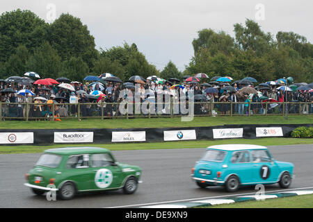Chichester, West Sussex, UK. 13th Sep, 2013. Goodwood Revival. Goodwood Racing Circuit, West Sussex - Friday 13th September. Spectators shelter under umbrellas during a period of rain as racing continues. © MeonStock/Alamy Live News - Stock Image