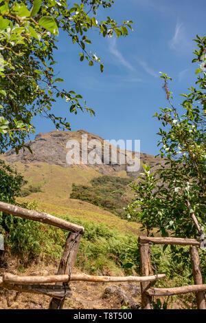 Vertical view of Ana Mudi peak in Eravikulam National Park in Munnar, India. - Stock Image