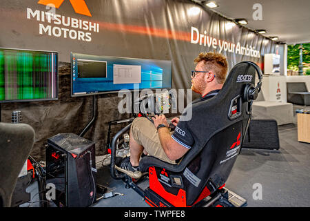 Turin, Piedmont, Italy. 22nd June 2019. Italy Piedmont Turin Valentino park Auto Show 2019 - Programming for virtual guide Credit: Realy Easy Star/Alamy Live News Credit: Realy Easy Star/Alamy Live News - Stock Image