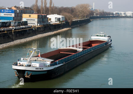 Empty barge reversing out of dock into the Rhine river, Niehl, Cologne, Germany. - Stock Image