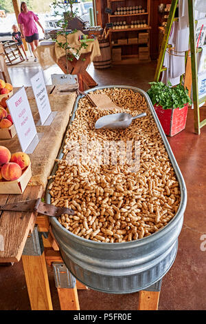 Large tub full of unshelled peanuts for sale in a country roadside market in Pike Road Alabama, USA. - Stock Image