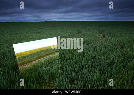 Reflection on a large mirror of a cereal crop field. Natural Park of Las Lagunas de Villafafila. zamora. Spain - Stock Image