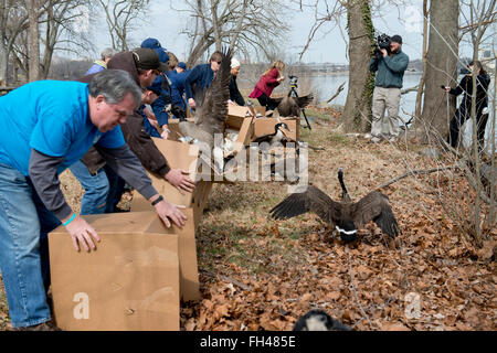Members of the incident management diviision at Coast Guard Sector Baltimore and members of the local community - Stock Image