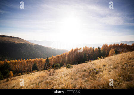 Scenic view of Carpathian mountains against sky - Stock Image
