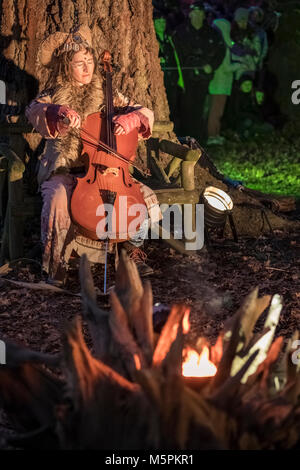 Woman playing a cello in a woodland setting during outdoor theatre performance by Whispering Wood Folk, UK - Stock Image