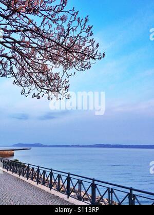 Lake view in spring season - Stock Image